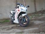 Shineray XY 250